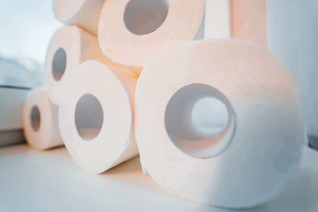 Airbnb bathroom must-have: Extra toilet paper